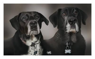 Twodogs1 by YOB