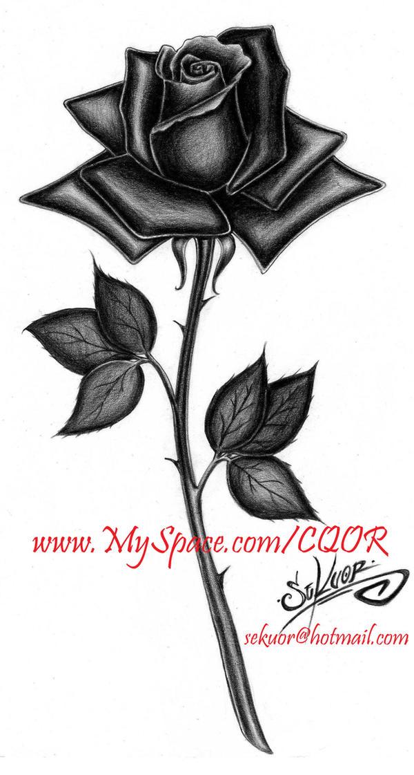 Rosa Negra by SEKUOR on DeviantArt