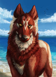 At the beach by Aurru