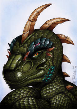 Reptile Portrait 2017