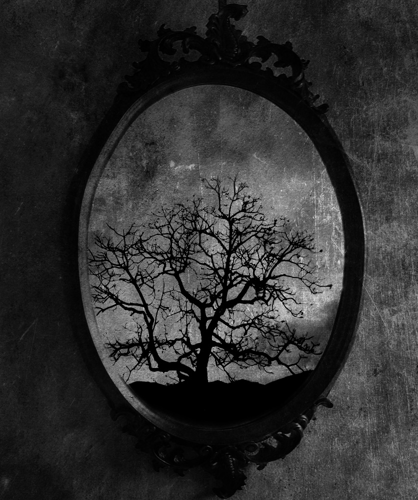 Old Mirror By Vickie666