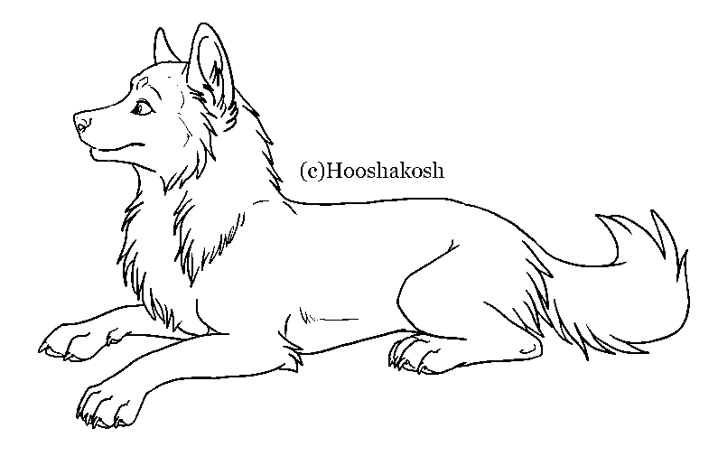 friendly wolf coloring pages - photo#8