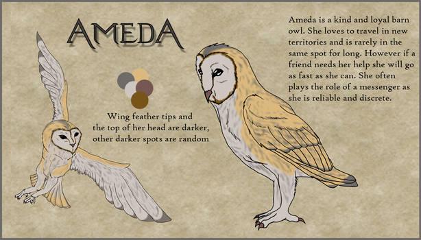 CS Ameda