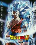 Songoku Super Instinct