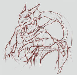 Sakhees, argonian sketch
