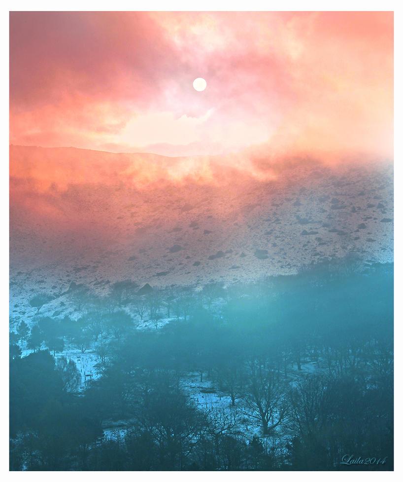 Misty by dreamsofwinter