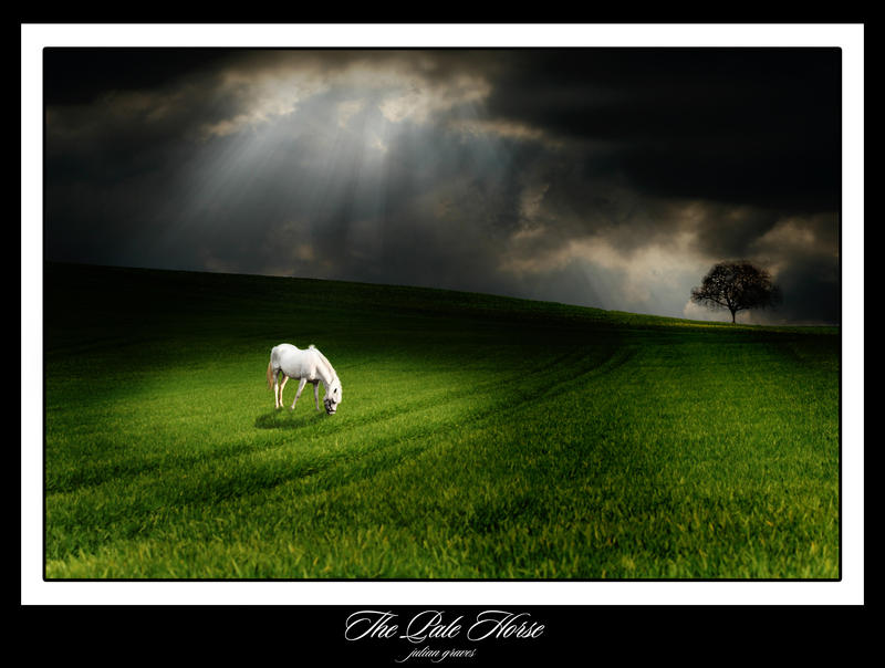 http://fc17.deviantart.com/fs26/i/2008/157/7/3/The_Pale_Horse_by_JulianGraves.jpg