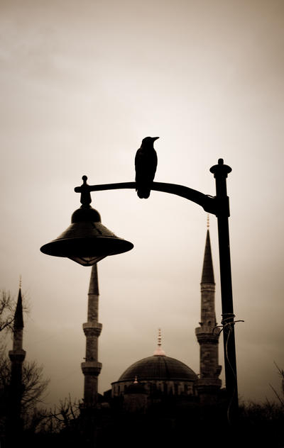 The Crow and The Mosque II by JulianGraves