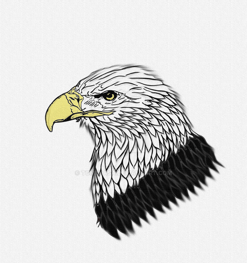 An eagle version 1.01 by tomekasa