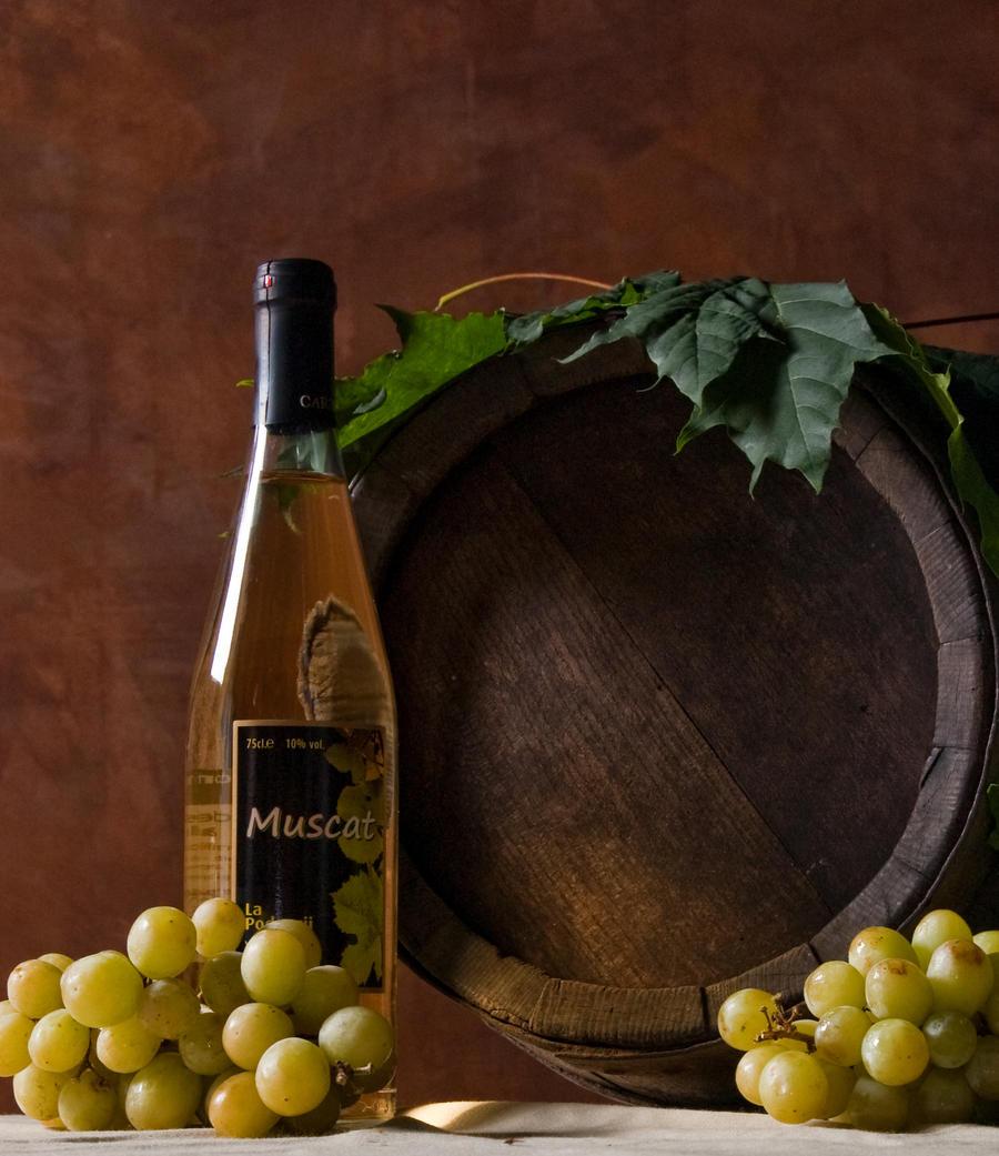 Mrtva priroda Wine_by_cojok-d3lbu5i