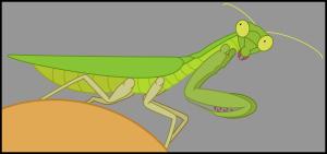 AerialReptoid's Profile Picture