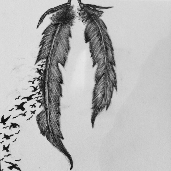crow feathers drawing. Black Bedroom Furniture Sets. Home Design Ideas