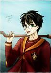 [RTaRD] Harry Potter Quidditch by YukiRichan