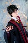 Harry Potter - 05 by YukiRichan