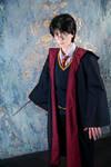 Harry Potter - 06 by YukiRichan