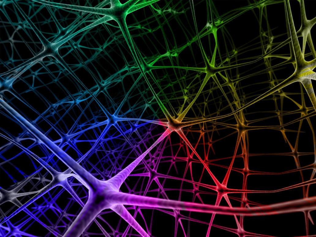 The Neural Network2 by rajasegar