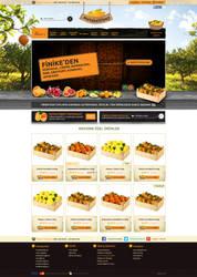 Orange web design by accelerator