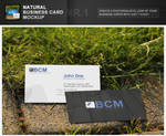 Natural Business Card Mockup 1