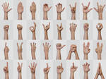 Hand Signs and Gestures