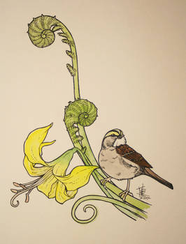 Sparrow with fiddleheads and lily