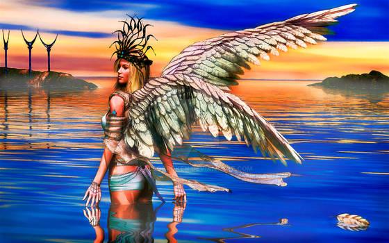 Harbor Angel