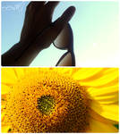 summer memories.. by she-is-weird