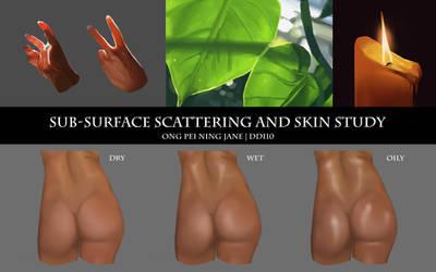 Sub-Surface Scattering and Skin Type Study by janegreentea