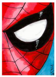Stan Lee Spiderman by Fitzufilms