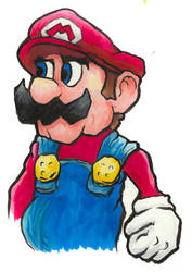 Mario by Fitzufilms