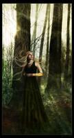 Fairy by Loreena24