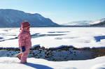 Little Arctic Explorer