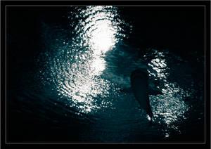 last diving