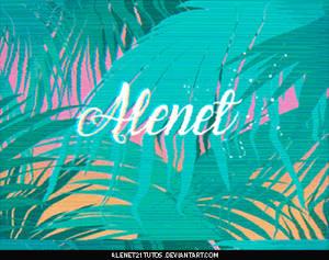 Glitch ID - Alenet21tutos