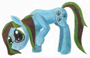 Timid Tracks Colored Pencil by Pawpr1nt