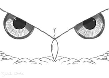 WIP Owl Face by LosingSarah