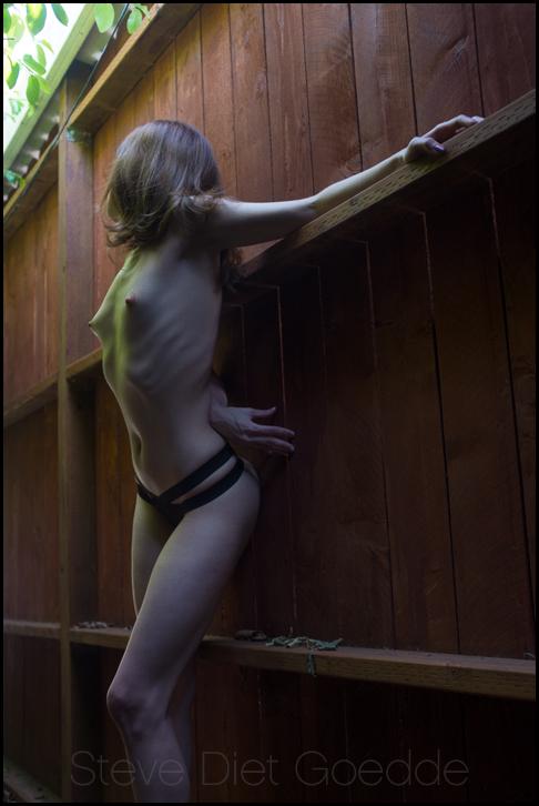 Phoebe L'amour Vine Light by stevedietgoedde