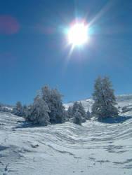 sun on the snow