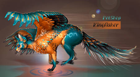 [AUCTION | CLOSED] Kingfisher adopt