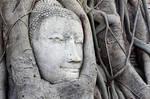 Landmark of Ayutthaya