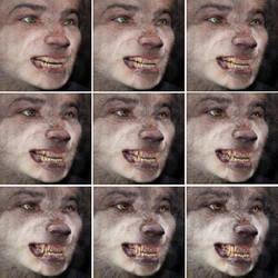 Timberwolf Face Sequence