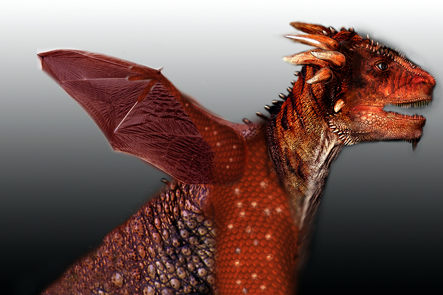 Red Dragon 2 by oboroten