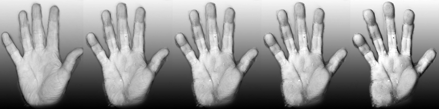 Monkey Hand Sequence by oboroten