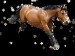 Horse Precut 1