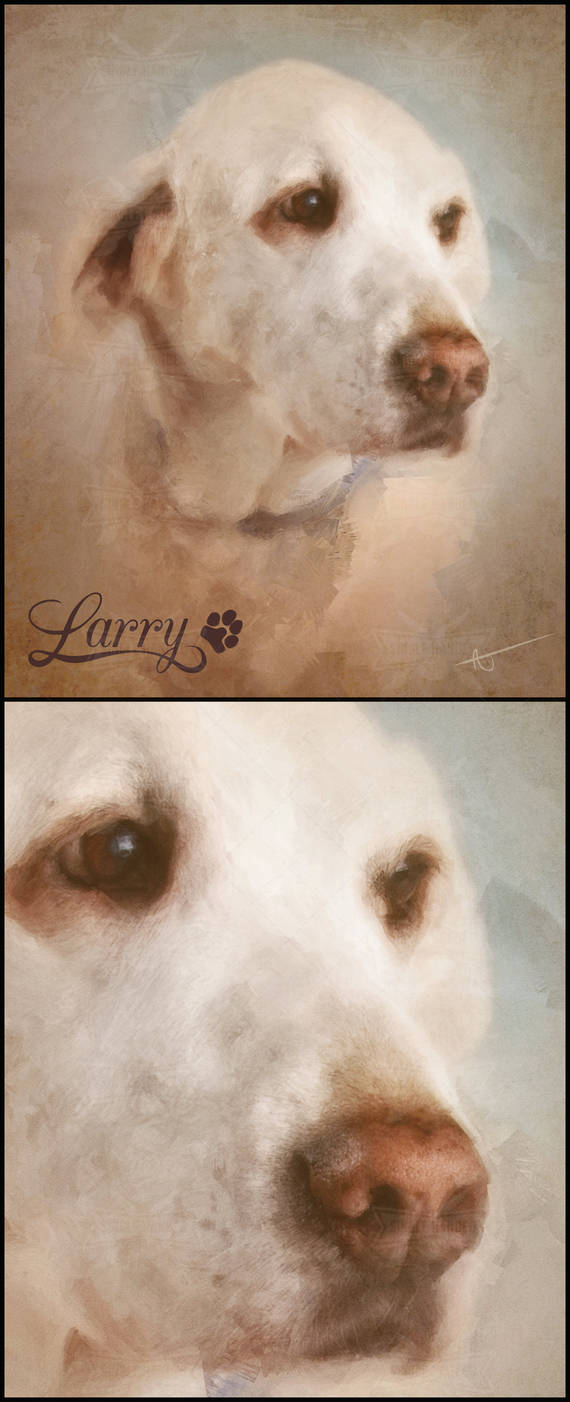Larry : Pet Portraits