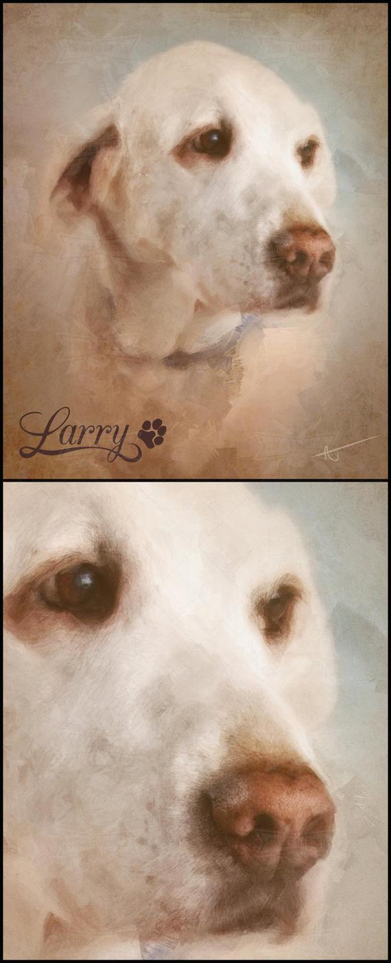 Larry : Pet Portraits by SingleHandedStudio