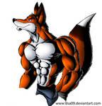 anthro fox practice