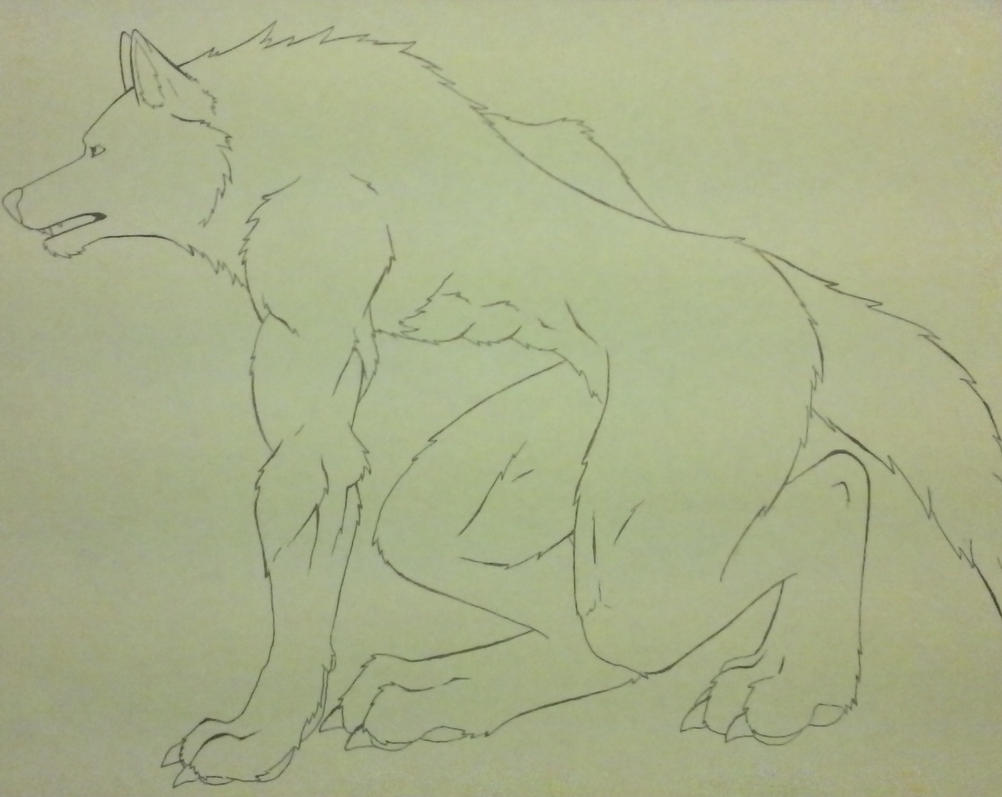 anthro wolf practice line art by DSA09