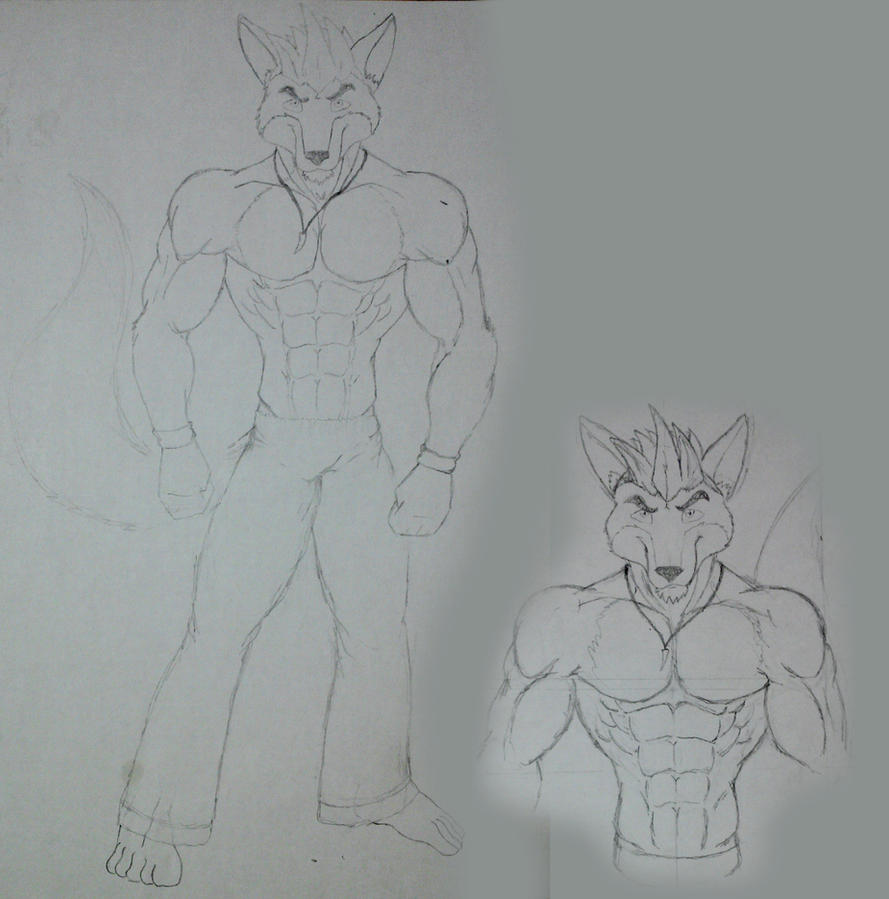 full anatomy muscle body anthro fox by DSA09