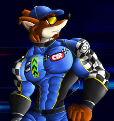 Crunch Bandicoot, the racer
