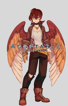 Angel Adopt (Closed)
